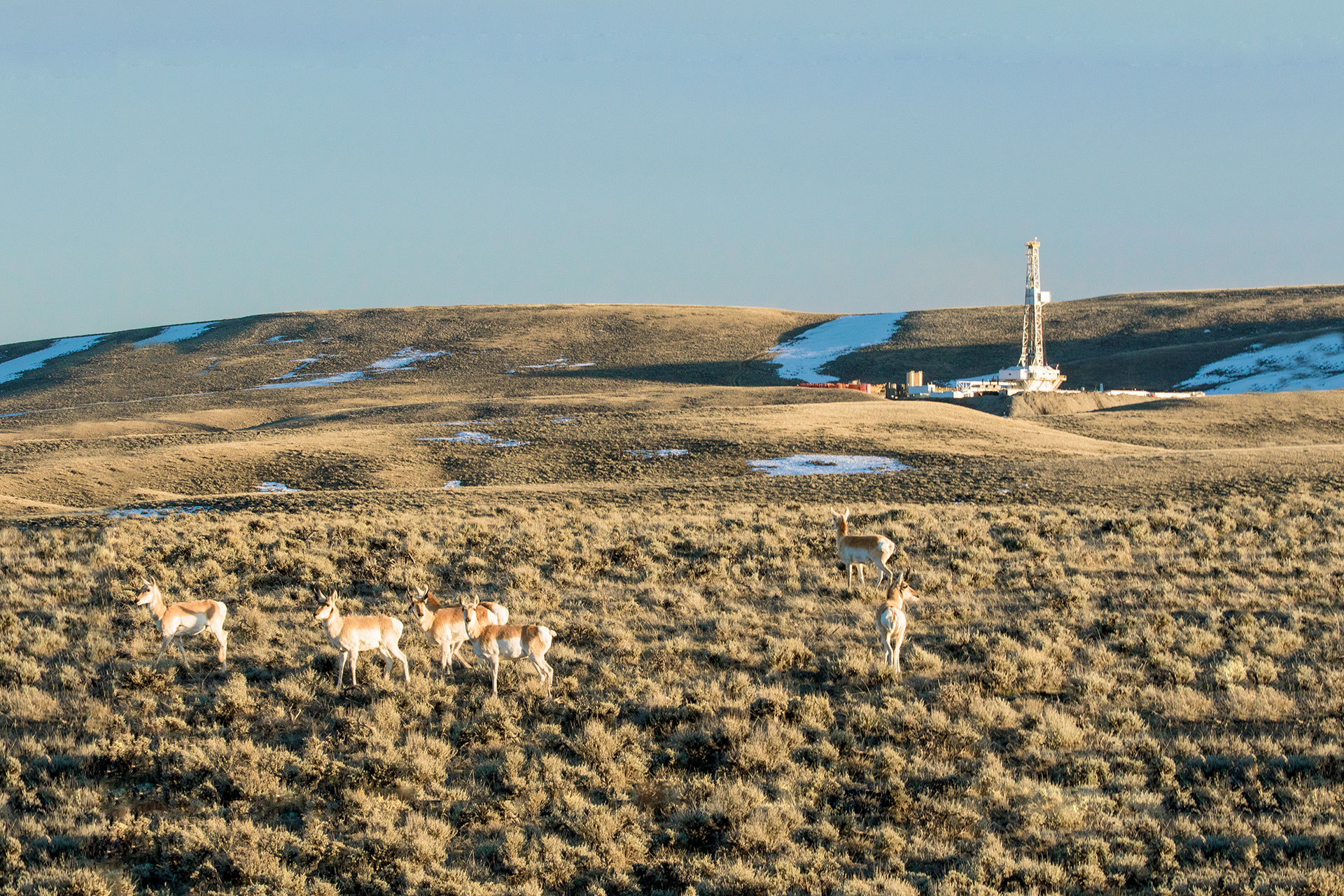 Oil and gas facilities managed by the BLM Pinedale Field Office (H/t Bryan Nealy, BLM Wyoming/Flickr, Creative Commons)