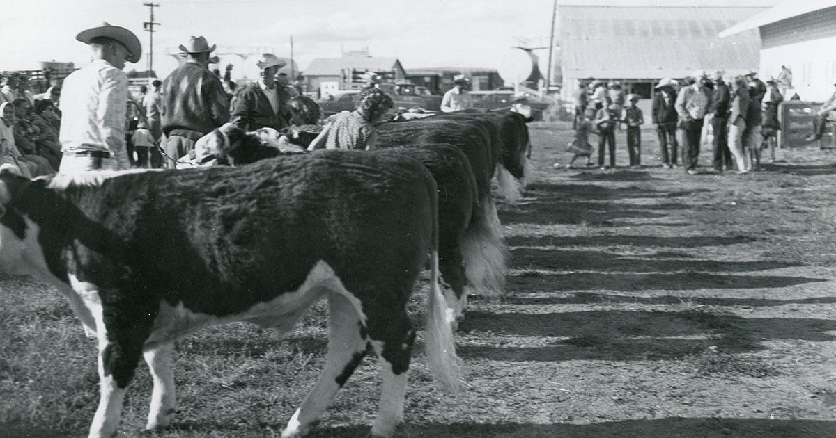 Campbell County Fair Historic Photo